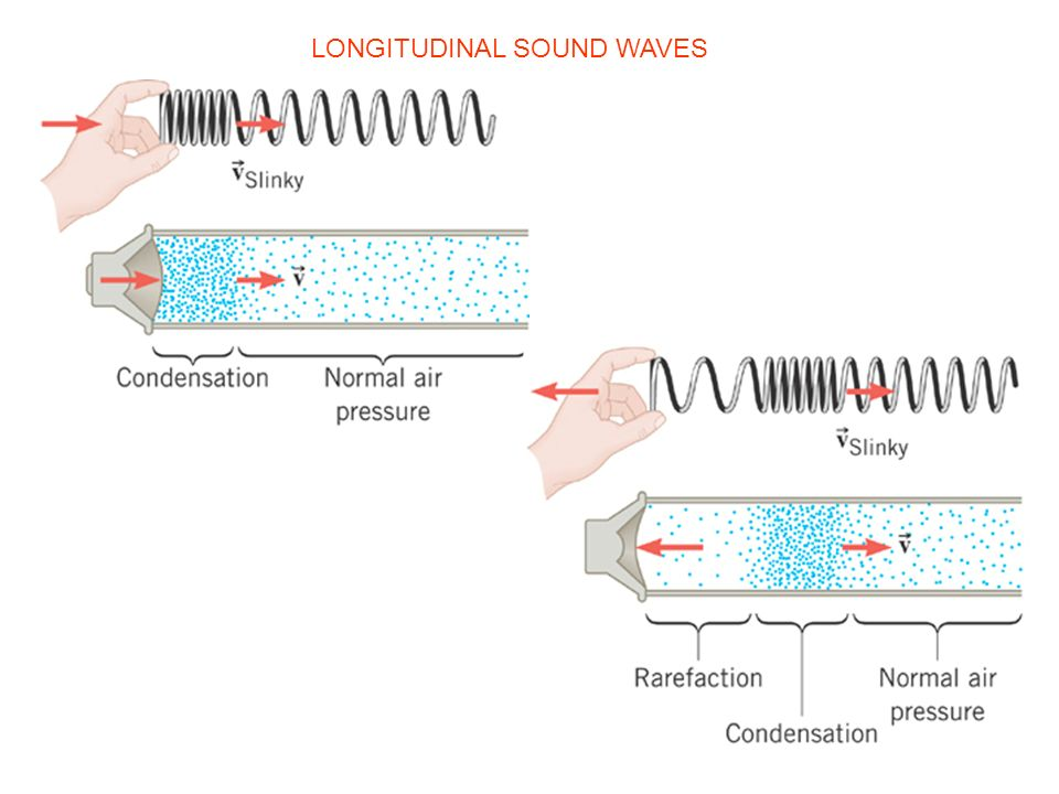 LONGITUDINAL SOUND WAVES