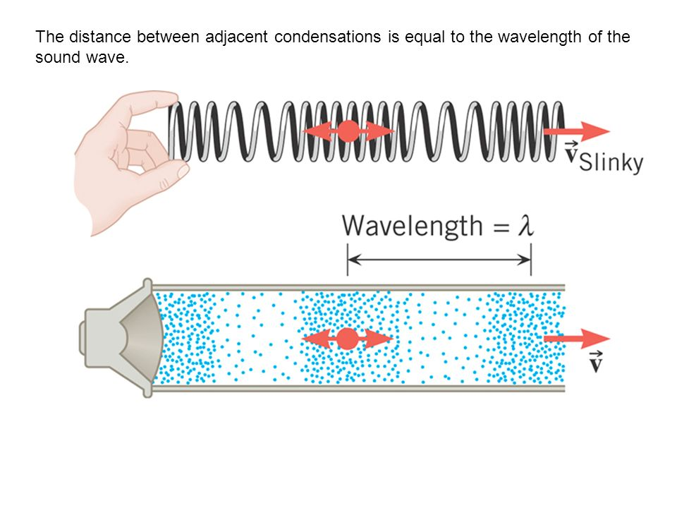 The distance between adjacent condensations is equal to the wavelength of the sound wave.