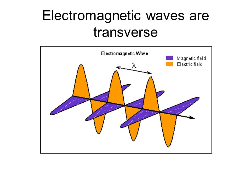 Electromagnetic waves are transverse