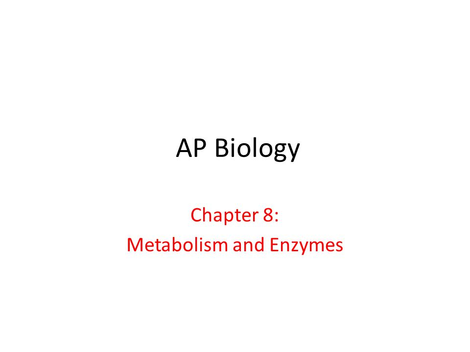 Chapter 8: Metabolism and Enzymes
