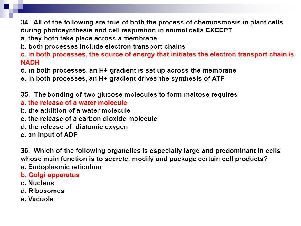 34. All of the following are true of both the process of chemiosmosis in plant cells during photosynthesis and cell respiration in animal cells EXCEPT
