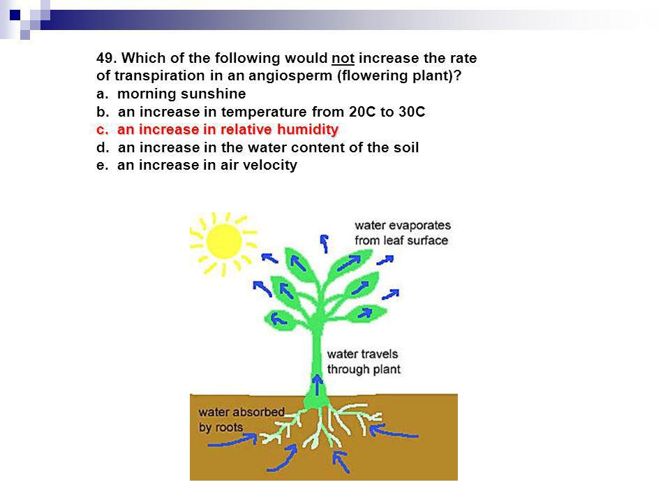 49. Which of the following would not increase the rate of transpiration in an angiosperm (flowering plant)