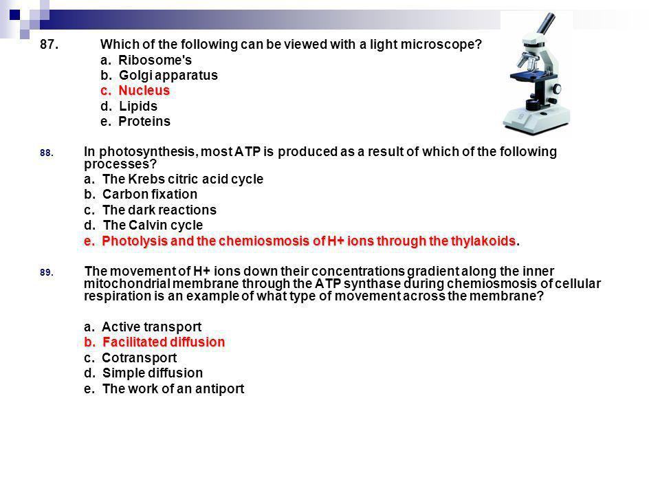 Which of the following can be viewed with a light microscope. a