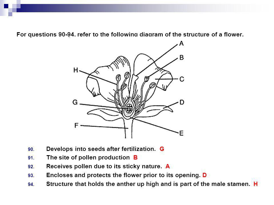 For questions 90-94, refer to the following diagram of the structure of a flower.