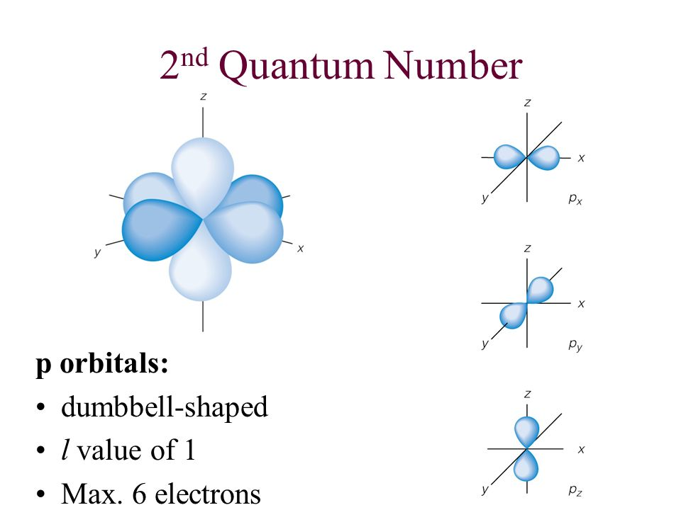 2nd Quantum Number p orbitals: dumbbell-shaped l value of 1
