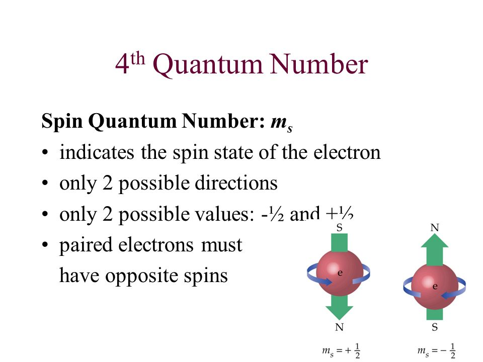 4th Quantum Number Spin Quantum Number: ms