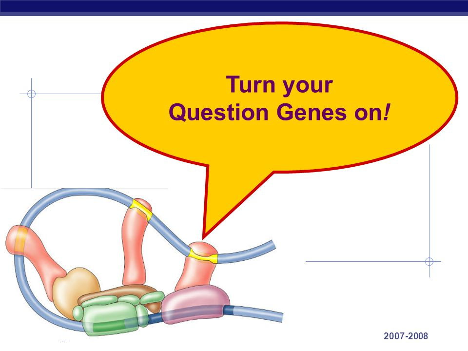 Turn your Question Genes on!