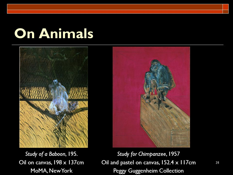 On Animals Study of a Baboon, 195. Oil on canvas, 198 x 137cm