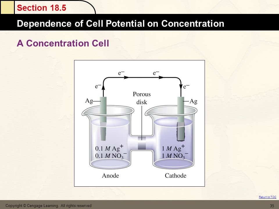 A Concentration Cell Copyright © Cengage Learning. All rights reserved