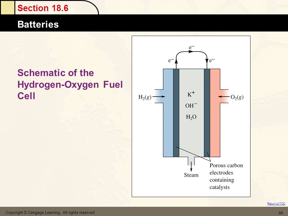 Schematic of the Hydrogen-Oxygen Fuel Cell