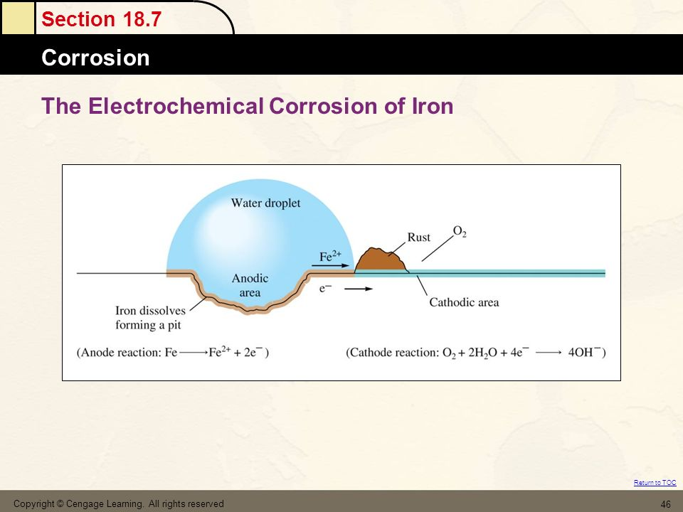 The Electrochemical Corrosion of Iron
