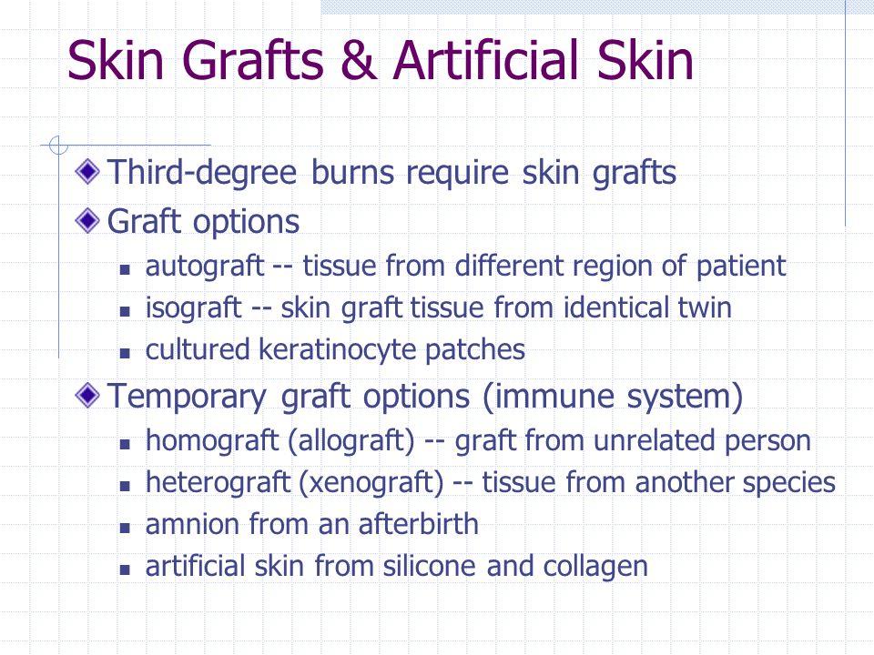 Skin Grafts & Artificial Skin