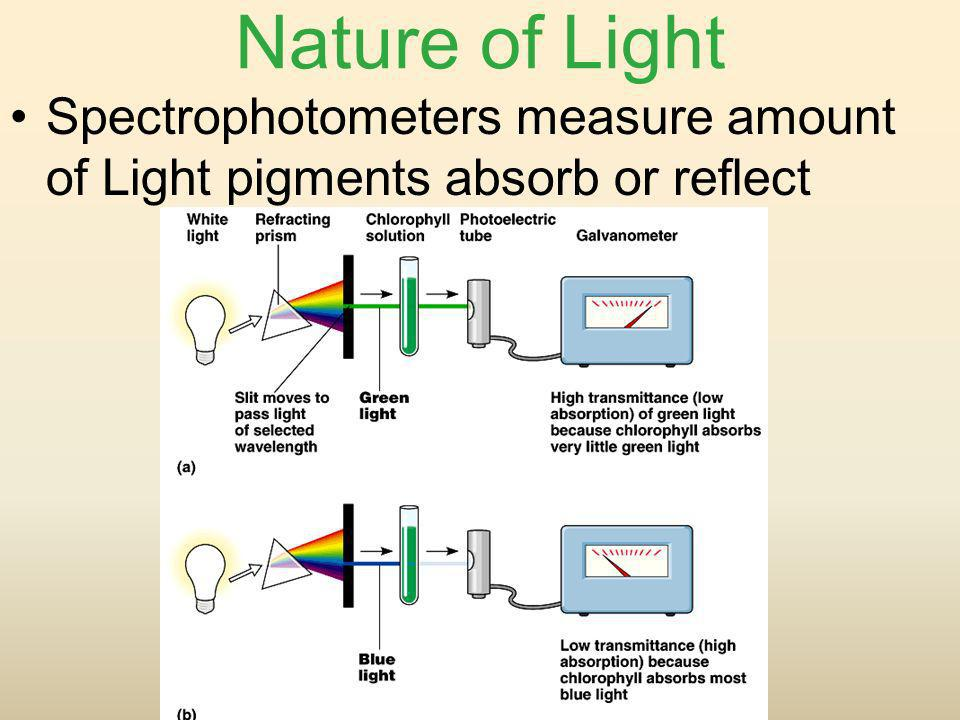 Nature of Light Spectrophotometers measure amount of Light pigments absorb or reflect