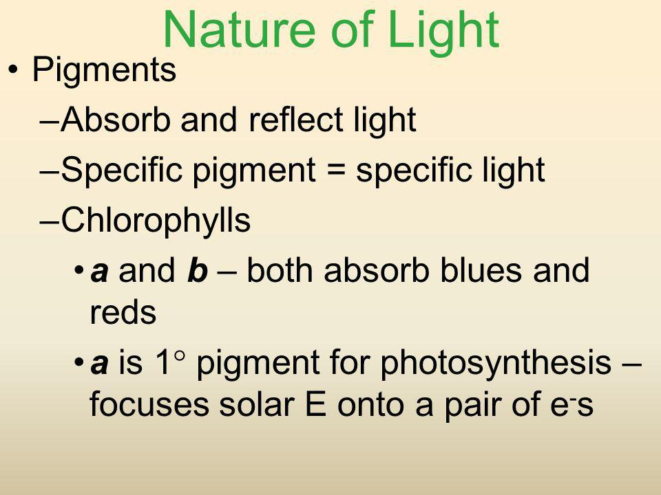 Nature of Light Pigments Absorb and reflect light