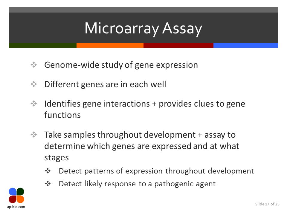 Microarray Assay Genome-wide study of gene expression