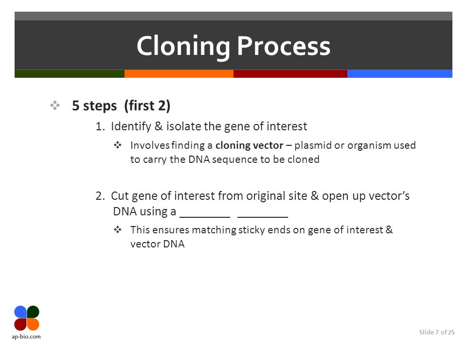 Cloning Process 5 steps (first 2)