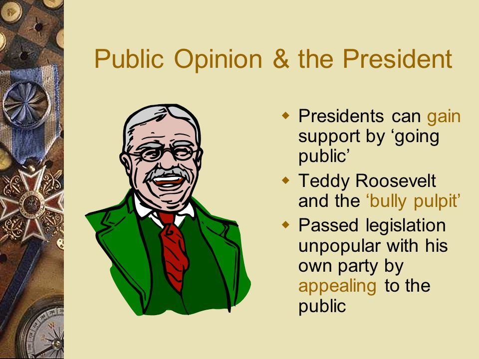 Public Opinion & the President
