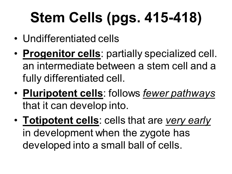 Stem Cells (pgs. 415-418) Undifferentiated cells