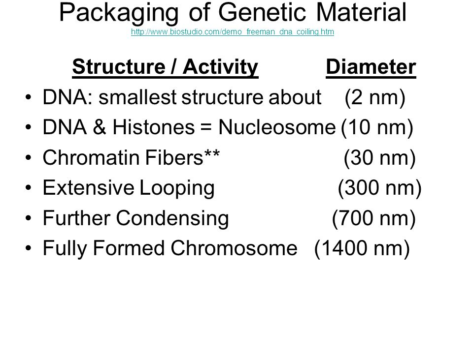 Packaging of Genetic Material http://www. biostudio
