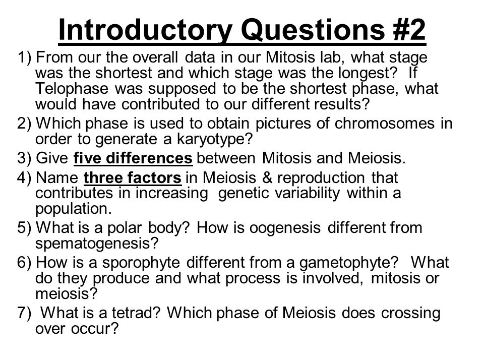 Introductory Questions #2