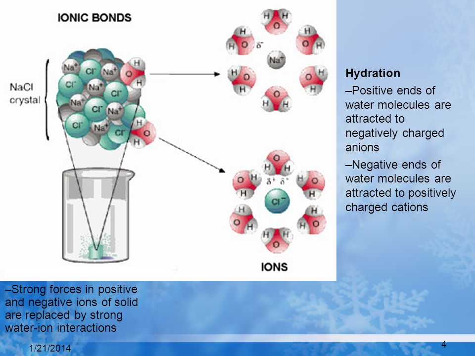 Hydration Positive ends of water molecules are attracted to negatively charged anions.