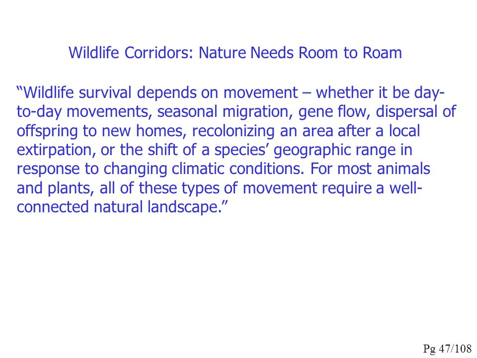 Wildlife Corridors: Nature Needs Room to Roam