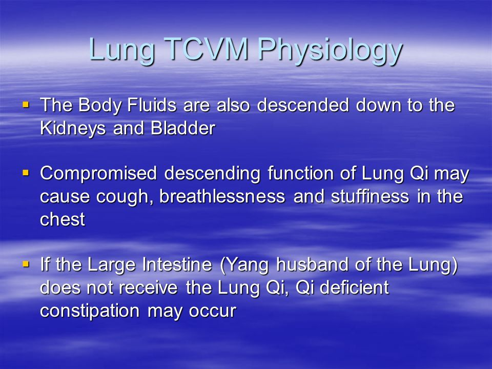 Lung TCVM Physiology The Body Fluids are also descended down to the Kidneys and Bladder.