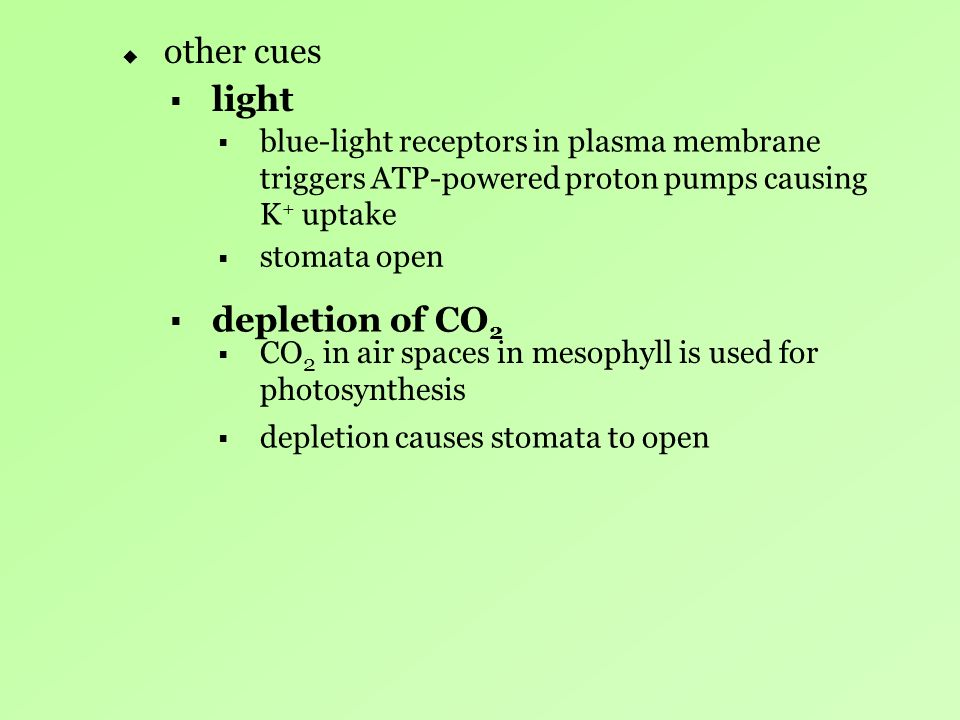 other cues light depletion of CO2