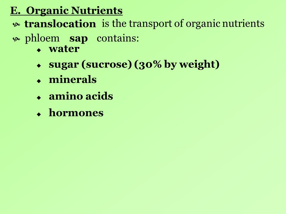 E. Organic Nutrients is the transport of organic nutrients. translocation. phloem contains: