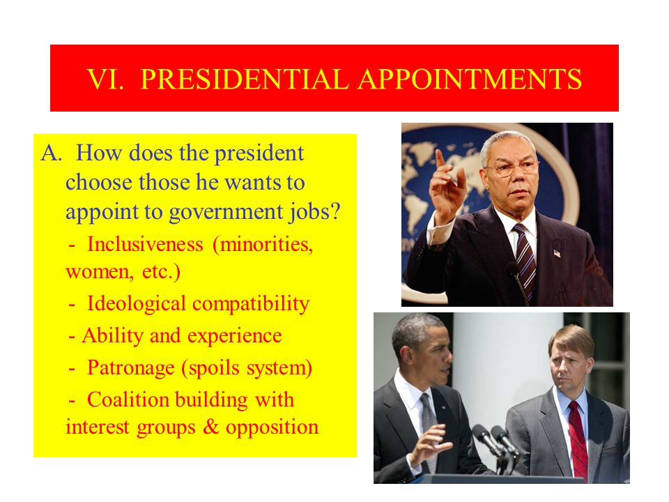 VI. PRESIDENTIAL APPOINTMENTS