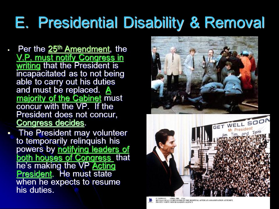 E. Presidential Disability & Removal