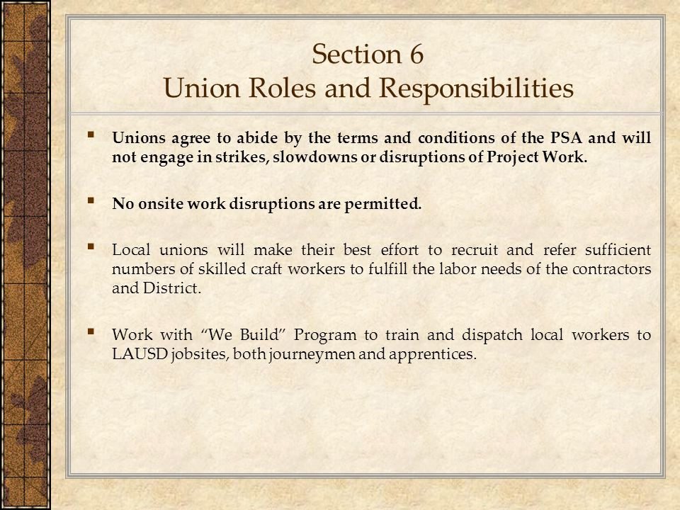 Section 6 Union Roles and Responsibilities