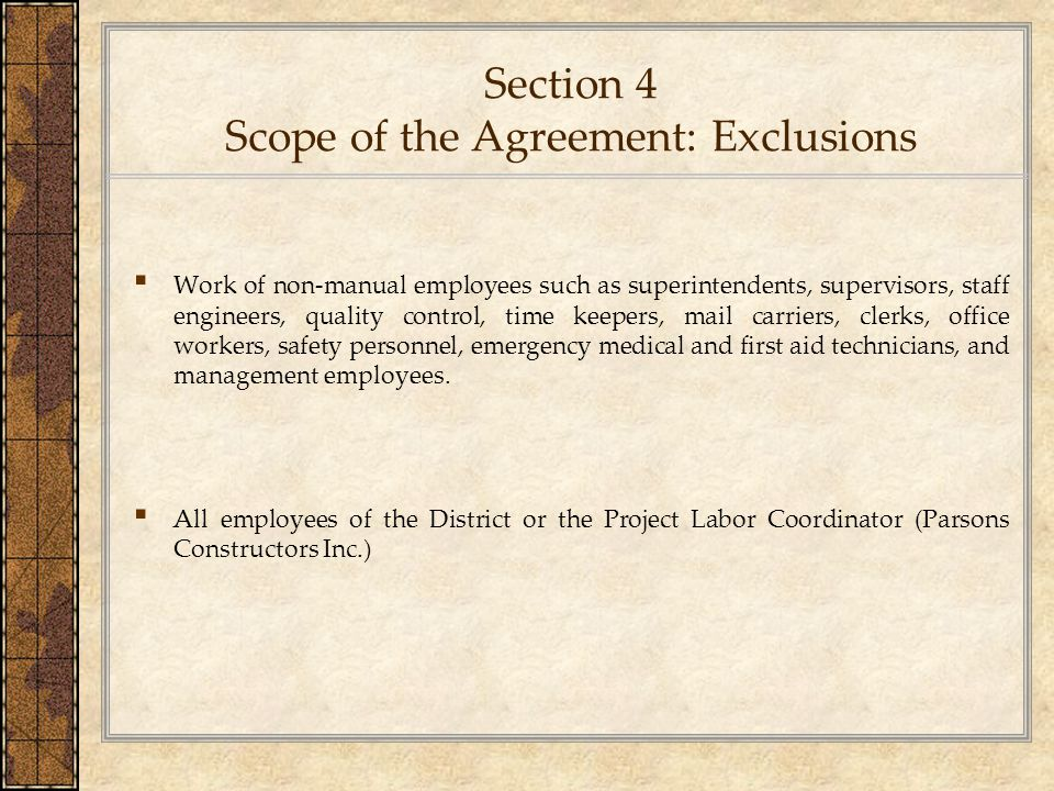 Section 4 Scope of the Agreement: Exclusions