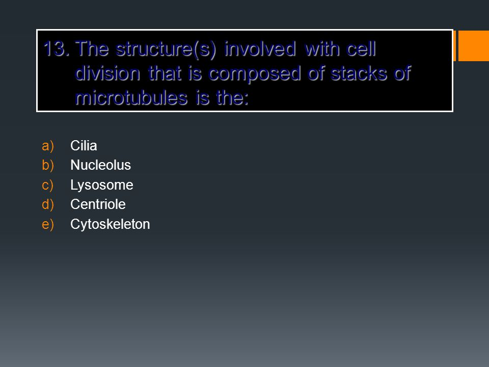 The structure(s) involved with cell division that is composed of stacks of microtubules is the: