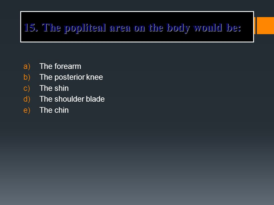 The popliteal area on the body would be: