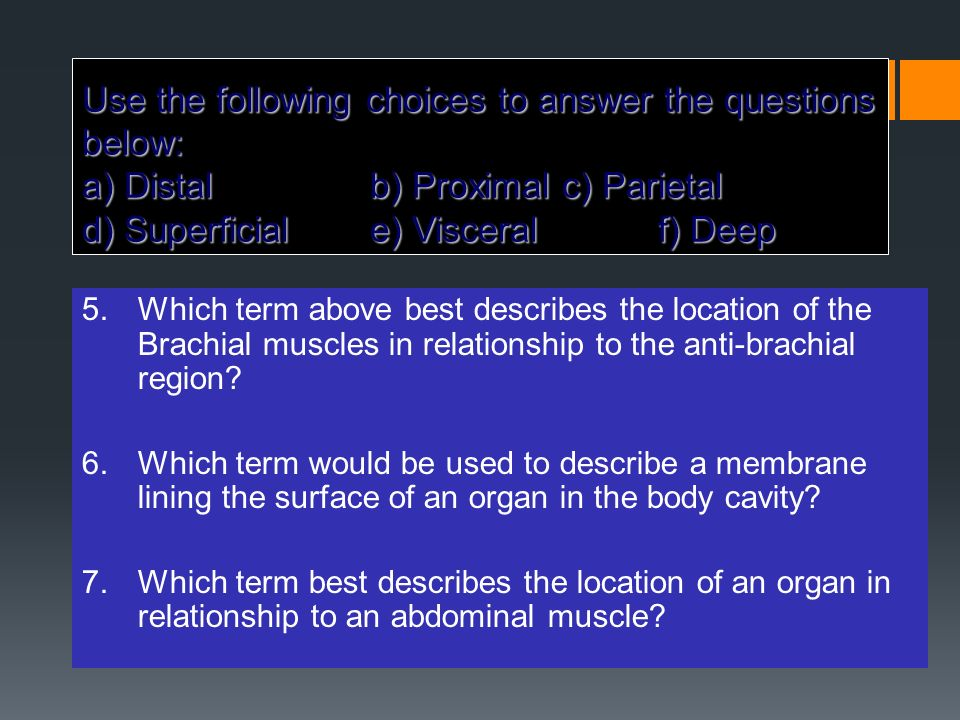 Use the following choices to answer the questions below: a) Distal