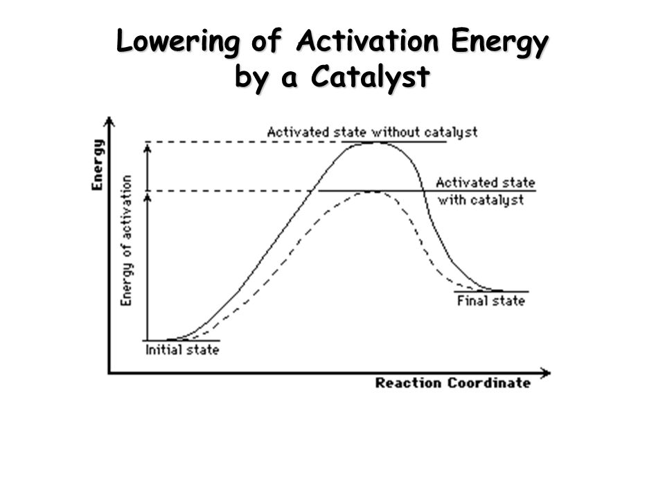 Lowering of Activation Energy by a Catalyst
