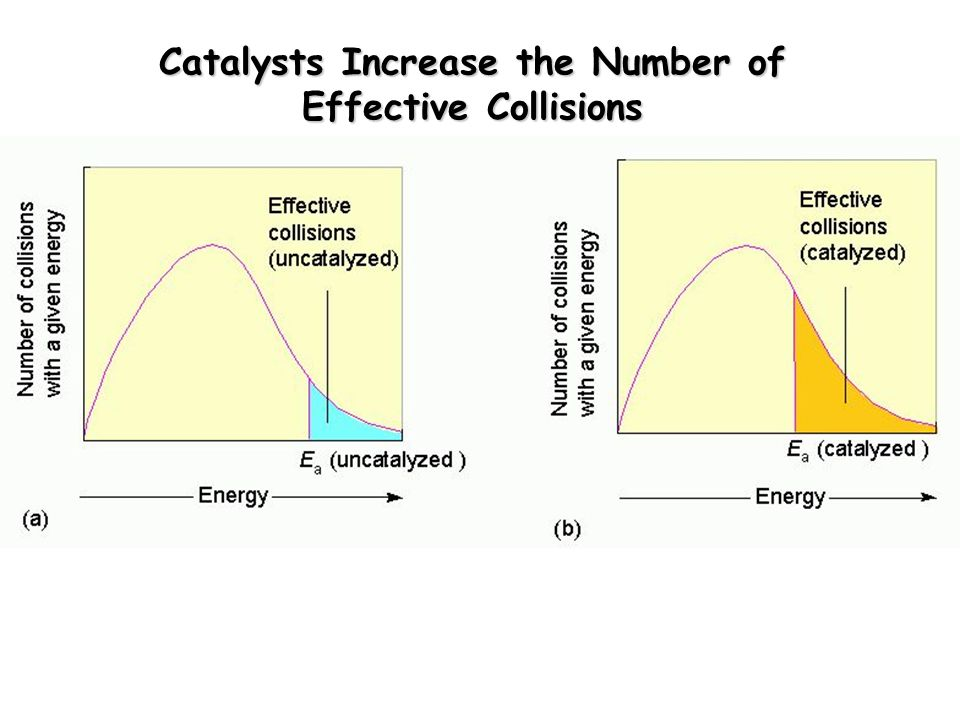 Catalysts Increase the Number of Effective Collisions