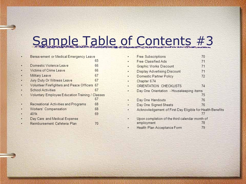 Sample Table of Contents #3