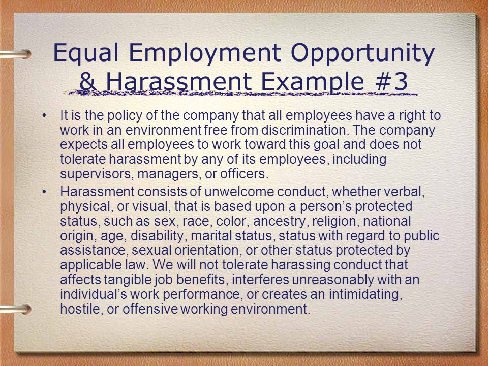 Equal Employment Opportunity & Harassment Example #3
