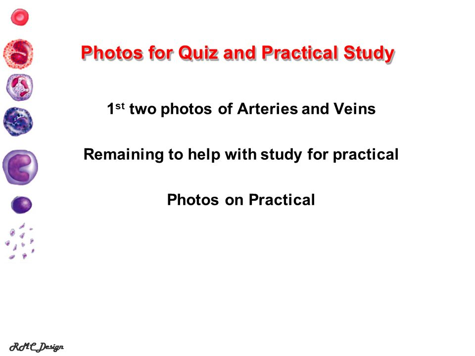 Photos for Quiz and Practical Study