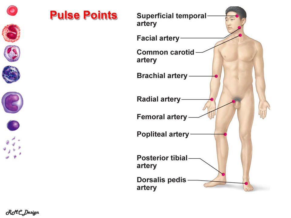 Pulse Points RMC Design