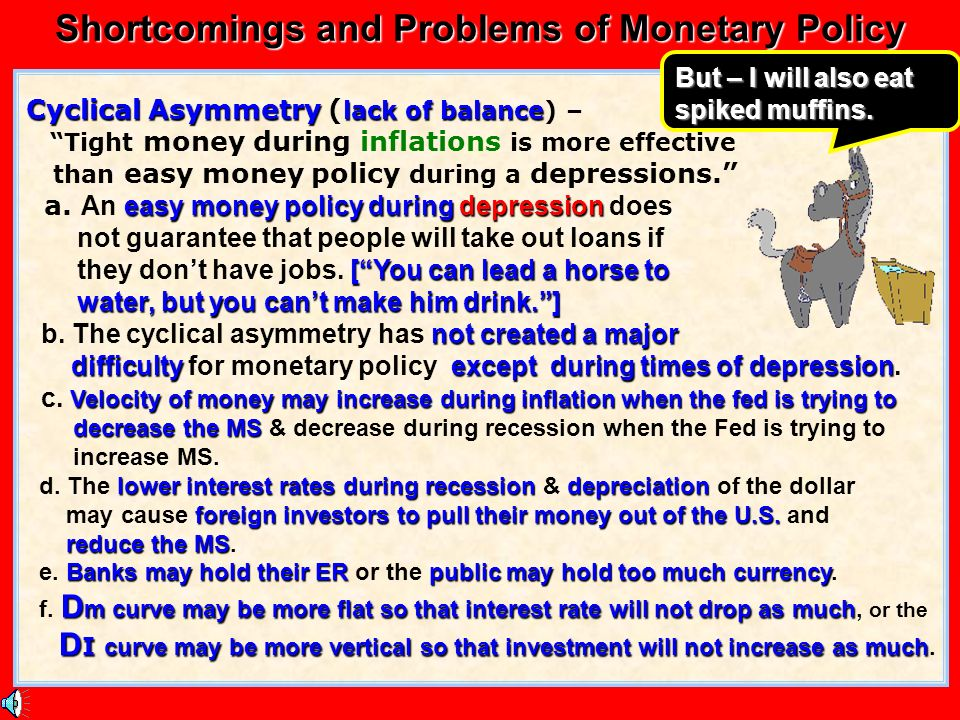 Shortcomings and Problems of Monetary Policy