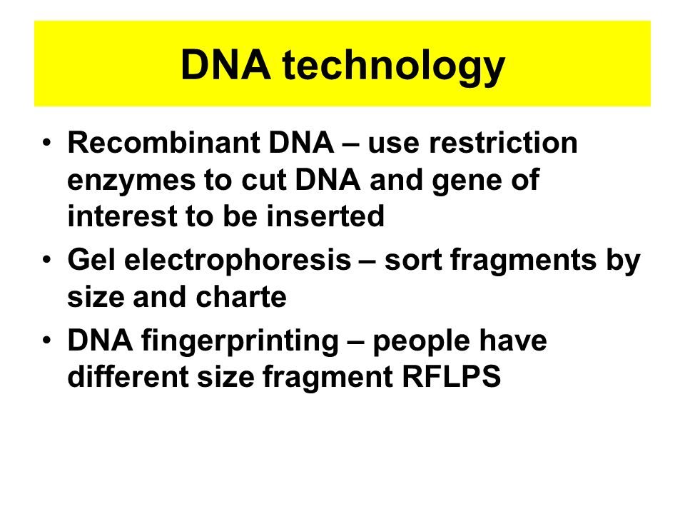 DNA technology Recombinant DNA – use restriction enzymes to cut DNA and gene of interest to be inserted.