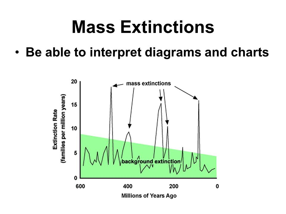 Mass Extinctions Be able to interpret diagrams and charts