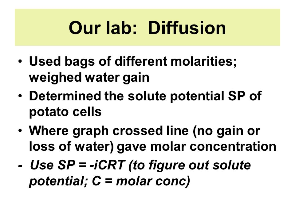 Our lab: Diffusion Used bags of different molarities; weighed water gain. Determined the solute potential SP of potato cells.