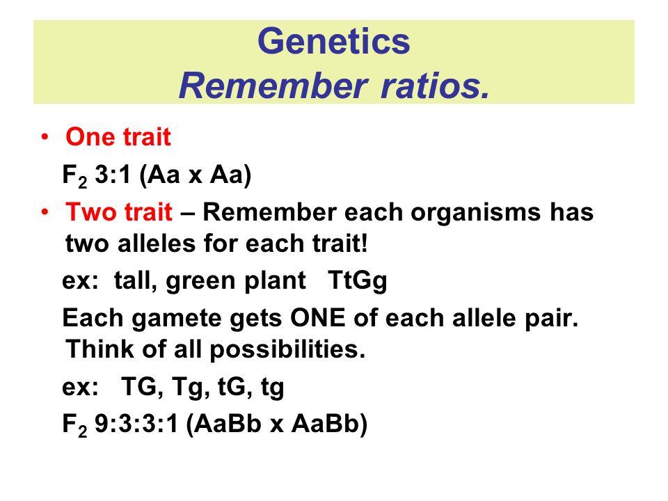 Genetics Remember ratios.