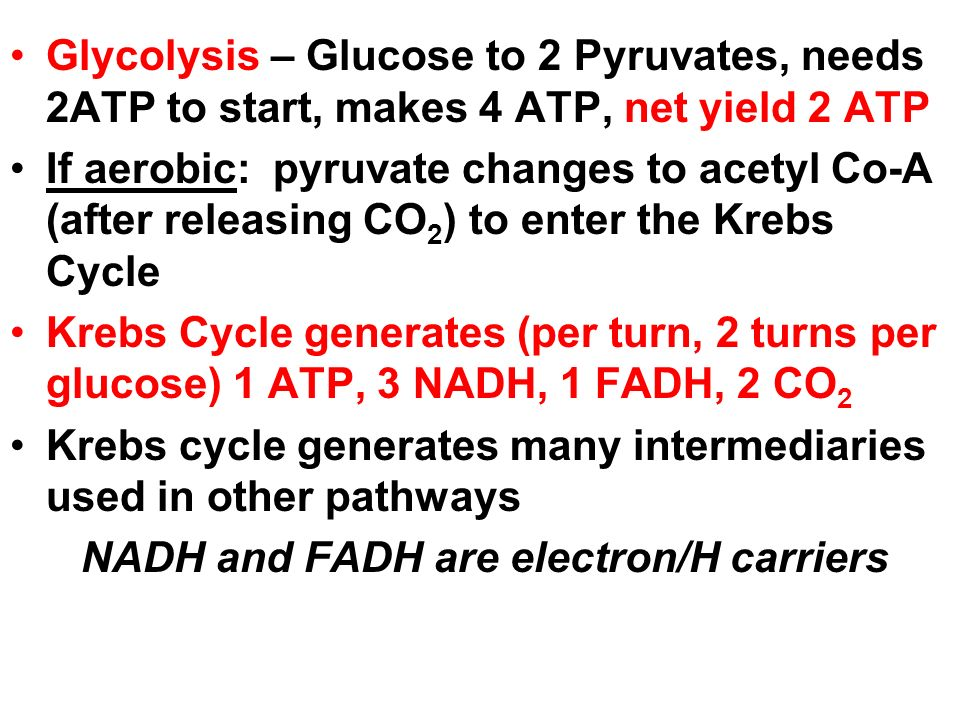 Glycolysis – Glucose to 2 Pyruvates, needs 2ATP to start, makes 4 ATP, net yield 2 ATP