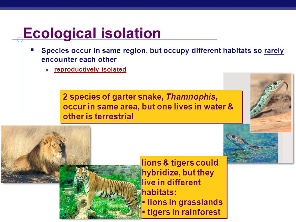 Ecological isolation Species occur in same region, but occupy different habitats so rarely encounter each other.