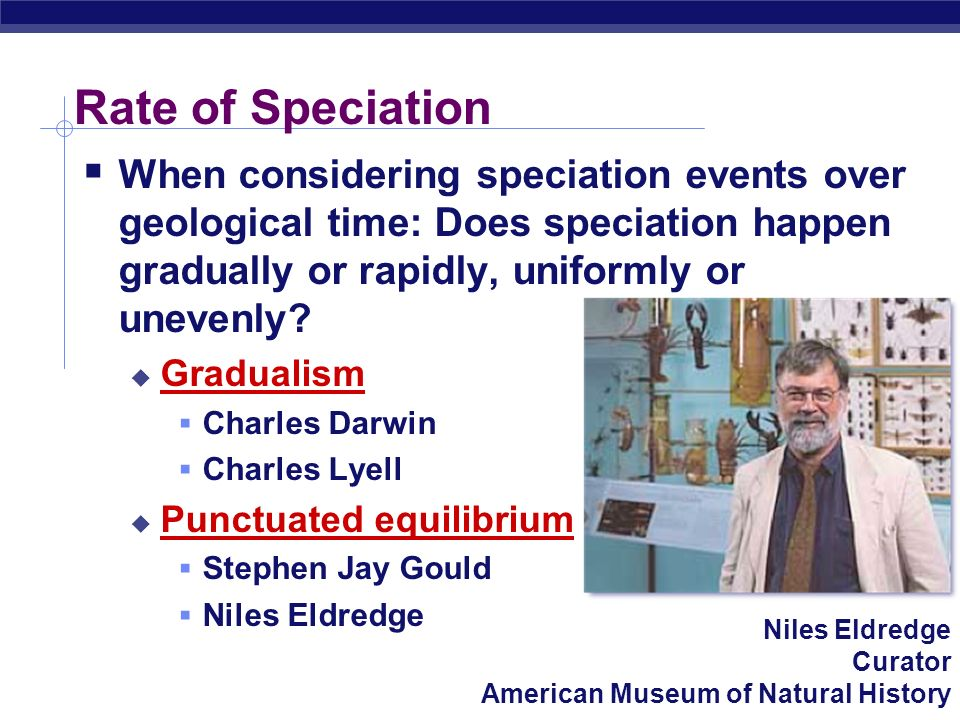Rate of Speciation When considering speciation events over geological time: Does speciation happen gradually or rapidly, uniformly or unevenly